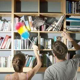 贴士:小心家里灰尘有毒